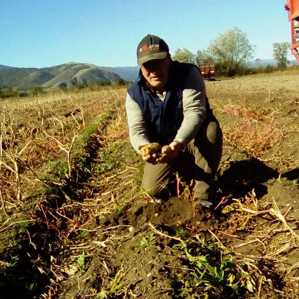 azienda agricola Percossi
