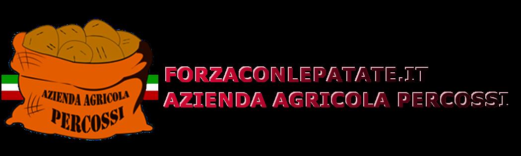 Azienda Percossi produzione e vendita della patate a pasta gialla di Avezzano
